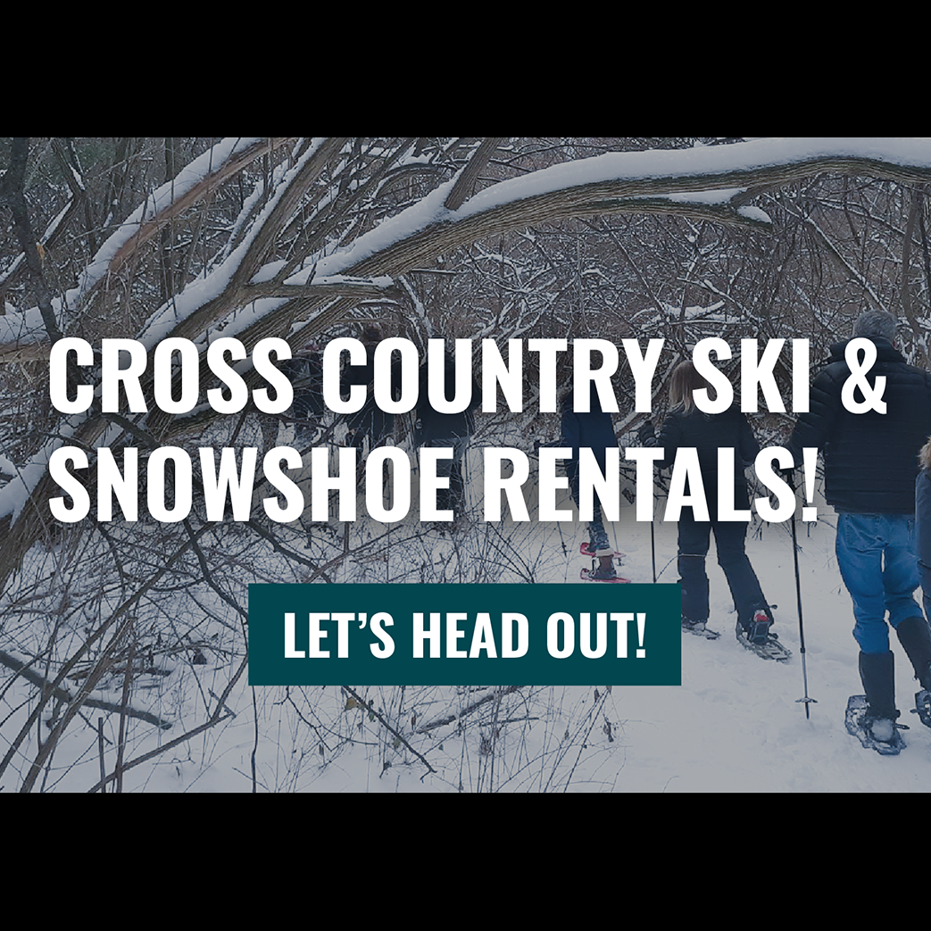 Cross Country Ski & Snowshoe Rentals