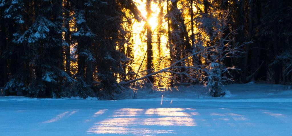 Rocktown Adventures | Ski & Snowshoe Maintenance